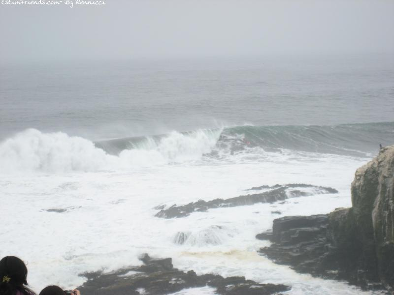 Punta Lobos IV Region Chili